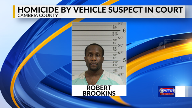 Homicide by vehicle suspect in court