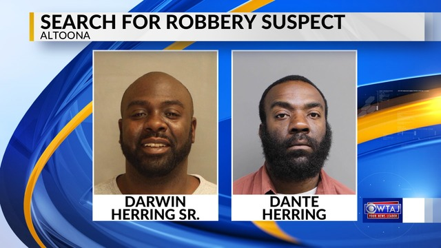 Brothers accused of armed robbery