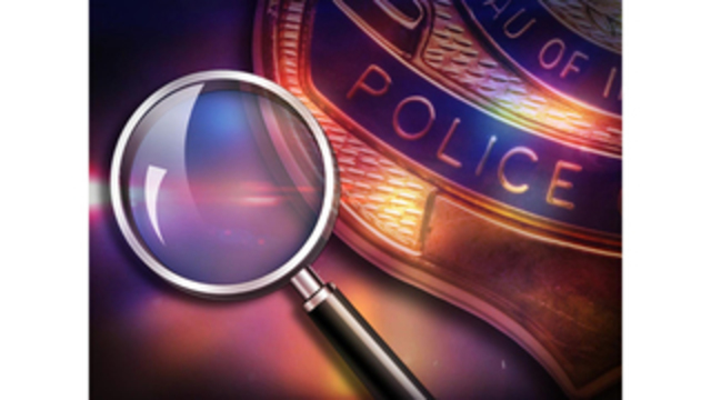 Police investigate shooting of cats